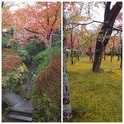紅葉が美しい庭園