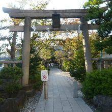 鳩森八幡神社の鳥居と参道です。奥の木陰に、本堂が見えます。