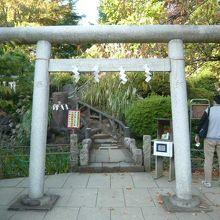 鳩森神社内にある千駄ヶ谷の富士塚の入口の鳥居と参道です。
