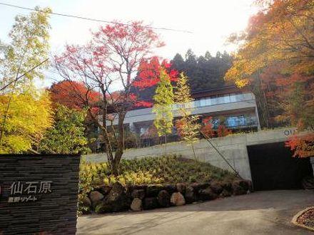 箱根 星野 リゾート 界 仙石原
