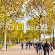 11月訪問でしたので、公園内の木々が黄葉していて、きれいでした。