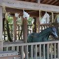 写真:出雲大社 神馬神牛像