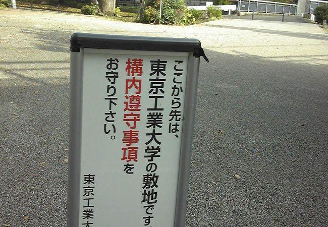 東京工業大学 大岡山キャンパス