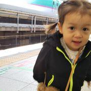 新幹線をみにいったよ