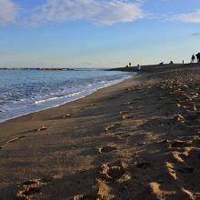 きれいな海と砂浜です