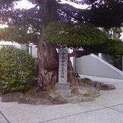 湯田温泉で必ず訪れたい場所。