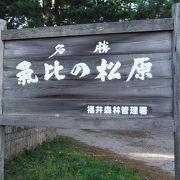 日本三大松原のひとつ