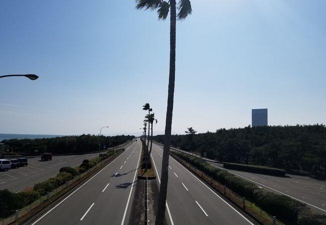 一ツ葉有料道路
