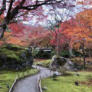 みごとな紅葉のお庭