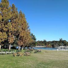 蜻蛉池(とんぼいけ)公園