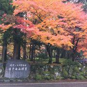 紅葉の見ごろに行けました。