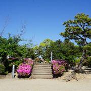 大倉公園つつじまつり