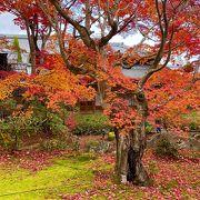 宝厳院の見事な紅葉!