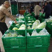 新鮮な地元野菜も販売されています。
