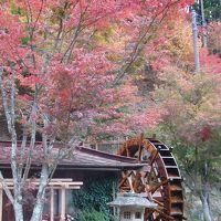 赤石温泉紅葉