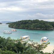 まさかのウミガメと遭遇 川平湾のグラスボート 石垣島