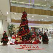 クリスマスツリーが魅力的です