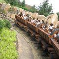 写真:七人の小人のマイントレイン (七個小矮人鉱山車)