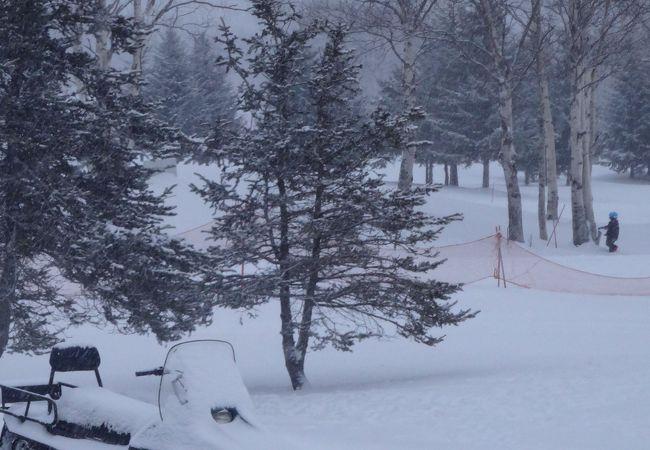 冬はスノーモービルが走る