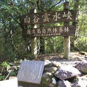 屋久島の自然を堪能しました