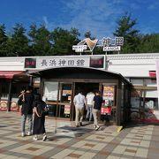 琵琶湖の小魚