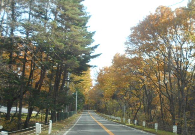 西武の有料道路ではあるが、北半分は、実質無料で通行可能