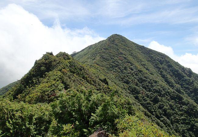 雑木林の登山道を抜けると、山頂から内陸の展望がいい!