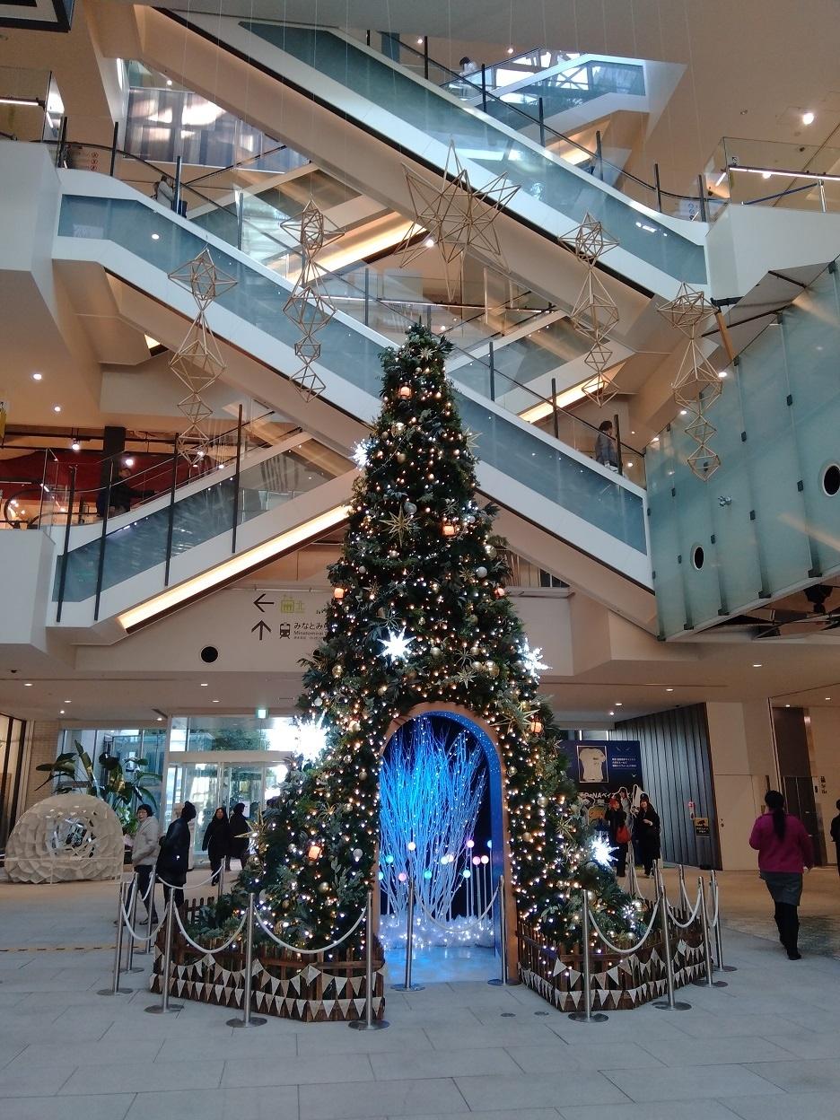 クリスマスツリーが飾られていました