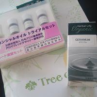 生活の木 (さっぽろ東急店)