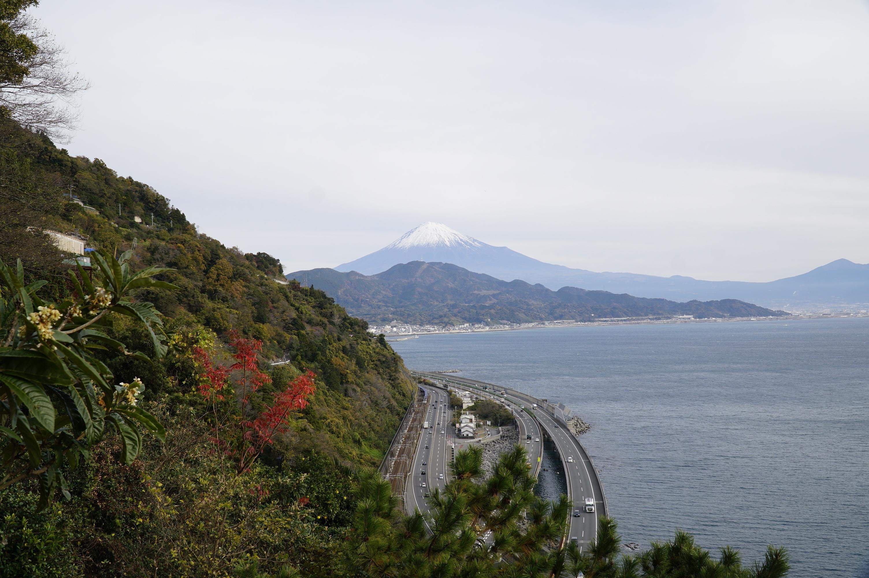 富士川・由比のツアー