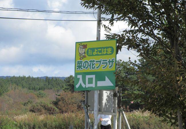 道の駅 よこはま菜の花プラザ