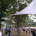 広大な敷地で行われるフェス