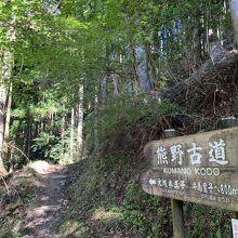 熊野古道中辺路の雰囲気を少し味わう