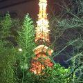 東京タワーが見えました
