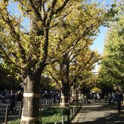 秋らしいお祭り