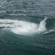 渦潮を近くで見ることができました。