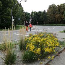 駅から旧市街へ行く道は花や緑豊かな住宅街
