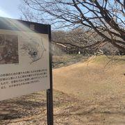 江戸時代の城跡です
