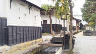 瀬戸川の鯉の餌やり