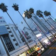 宮崎の代表的な繁華街です