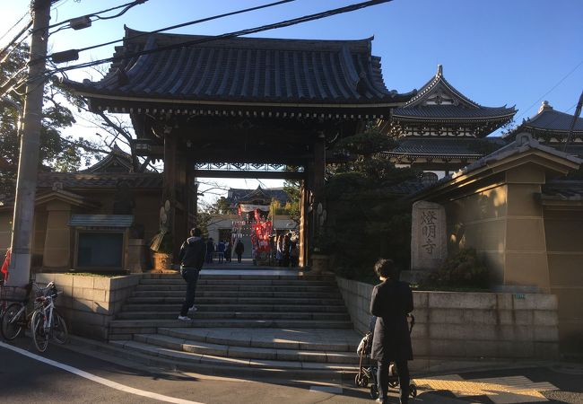 燈明寺 (江戸川区)