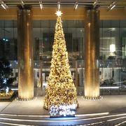 クリスマスシーズンのスクムウィット通り2019