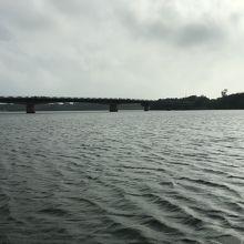 河口近くの風景です。