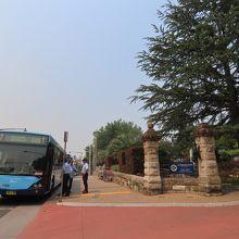 686番バスはキャリントンホテルの前から出る