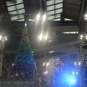 まだクリスマスツリーがありました。