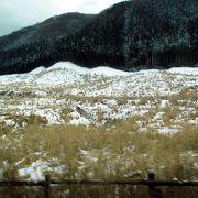 冬枯れ?のススキの原は寂しさいっぱい。