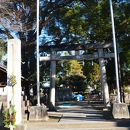 大神神社 (一宮市)