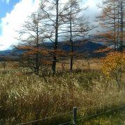10月末に訪れましたが、もうすでに紅葉が終わりかけている感じがしました。
