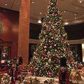 暖かいクリスマスツリー