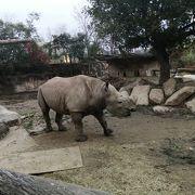 工夫をしている素敵な動物園